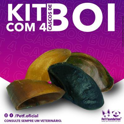 Kit Casco